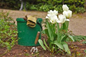 Earth Day Spring Clean-Up at the Castle @ Bayside Historical Society