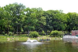 Basic Canoeing @ Baisley Pond Park