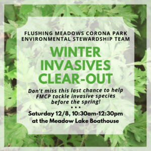 Winter Invasives Clear-Out @ Meadow Lake (Flushing Meadows Corona Park) | New York | United States