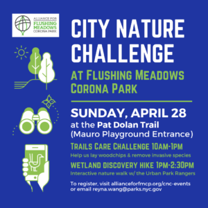 City Nature Challenge: Wetland Discovery Hike @ Pat Dolan Trail (Mauro Playground Entrance) | New York | United States