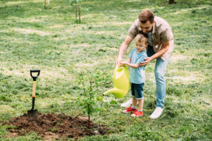 Father's Day Planting @ Pat Dolan Trail (Mauro Playground Entrance) | New York | United States