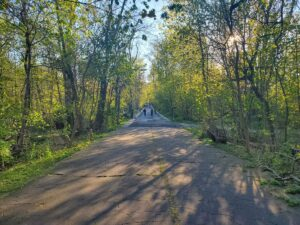 Virtual Walking Tour: The Vanderbilt Motor Parkway @ Online   New York   United States